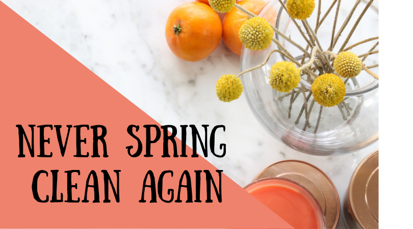 Never Spring Clean Again