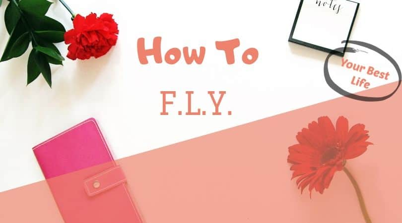 how to use the flylady system to keep your house clean